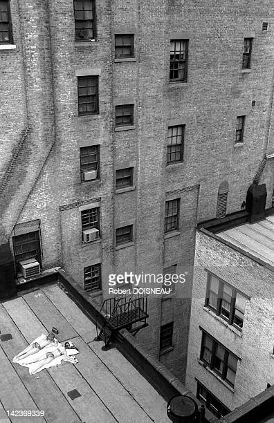 View from Arnold Newman's studio on two young women sun bathing on a roof top on April 26 1981 in New York United States