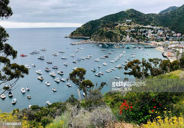 View from Avalon harbor from the Catalina Island ridge top about 1 hour away from the Los Angeles coast on April 20 2019
