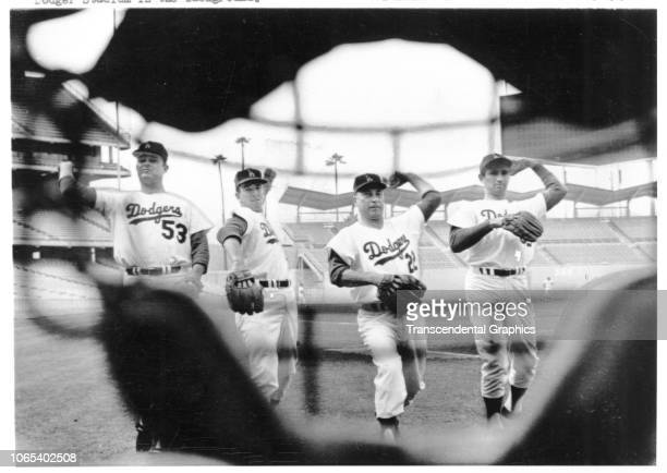 View from behind a catcher's mask of the four starting pitchers for the Los Angeles Dodgers at Dodger Stadium Los Angeles California 1965 Pictured...