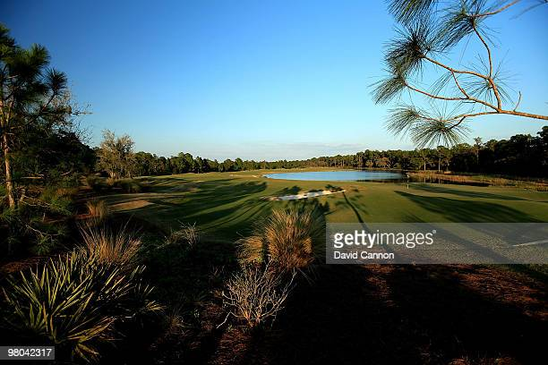 View from behind the green on the par 5 17th hole at the Concession Golf Club on March 18, 2010 in Bradenton, Florida.
