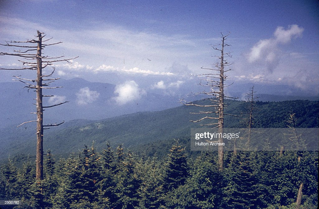 View From Clingman's Dome : News Photo