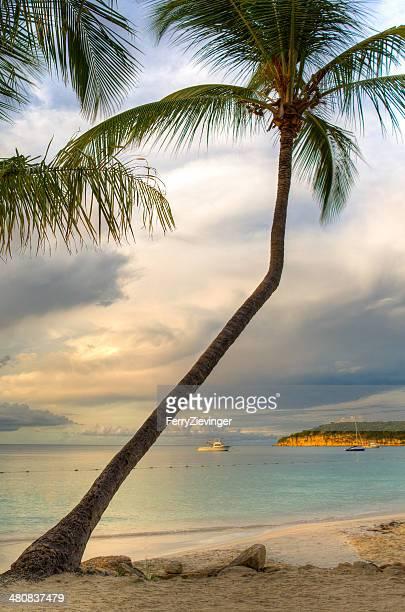 View from Coconut Grove towards Dickenson Bay, Antigua, Caribbean