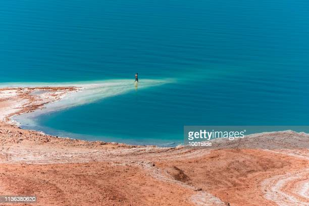 vista desde el mar muerto - mar muerto fotografías e imágenes de stock