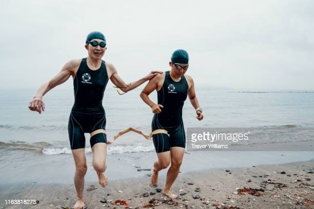 view from directly above a visually impaired female triathlete swimming in the ocean with her guide - anführen stock-fotos und bilder
