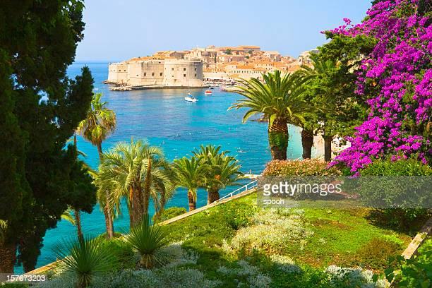 Blick vom Garten Blumenmuster auf Dubrovnik, Kroatien