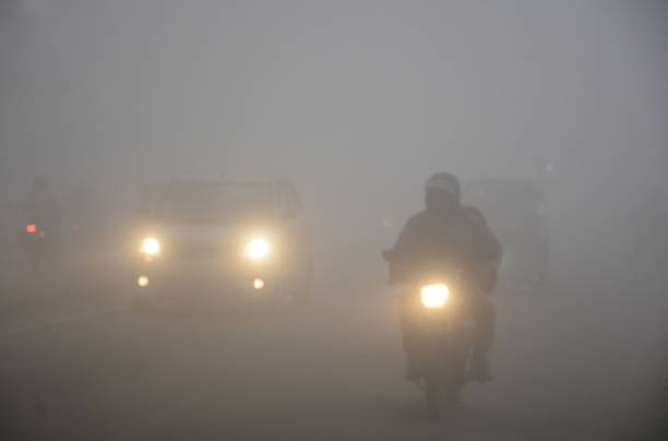 IND: Cold Wave And Dense Fog Condition Prevail In North India