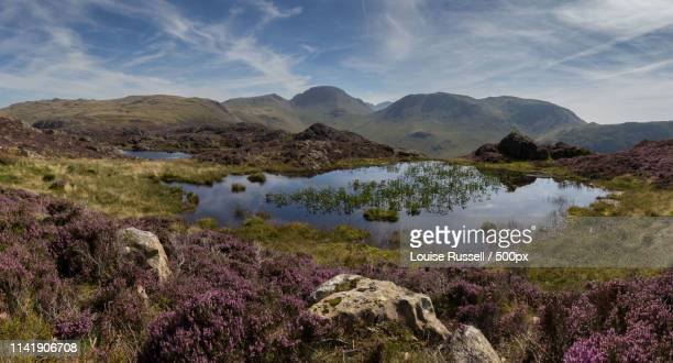 View From Haystacks, Lake District