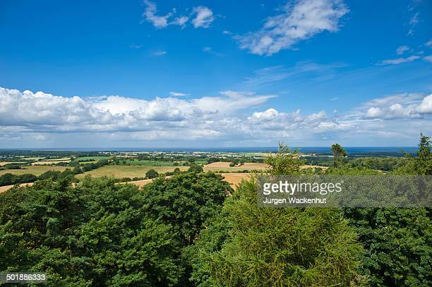 view from hessenstein tower to hohwacht bay, panker, baltic sea, schleswig-holstein, germany, europe - schleswig holstein stock pictures, royalty-free photos & images