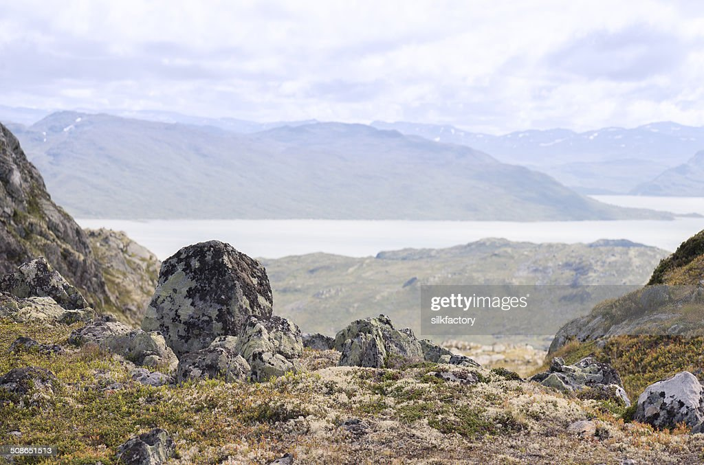 View from hiking trail of Jotunheimen National Park in summer : Stock Photo
