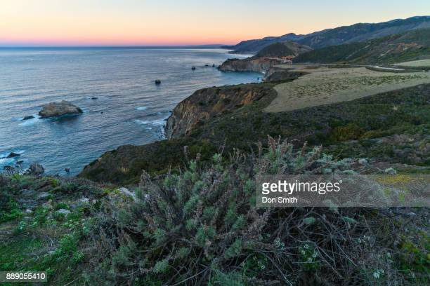 view from hurricane point - don smith stock pictures, royalty-free photos & images