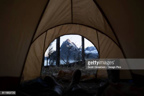 view from inside a tent through the door to the rugged peaks of the kenai mountains, kachemak bay state park - kachemak bay stock pictures, royalty-free photos & images