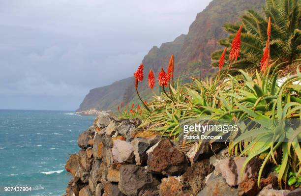 view from jardim do mar, madeira, portugal - madeira island stock photos and pictures