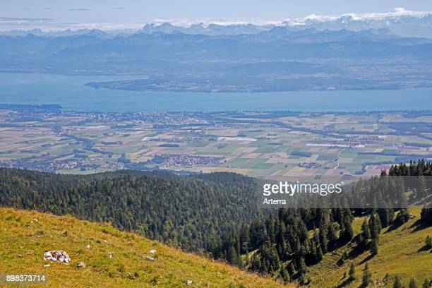 View from La Dele mountain of the Jura canton of Vaud overlooking Lake Geneva and Alpine mountain peaks of the Swiss Alps in Switzerland