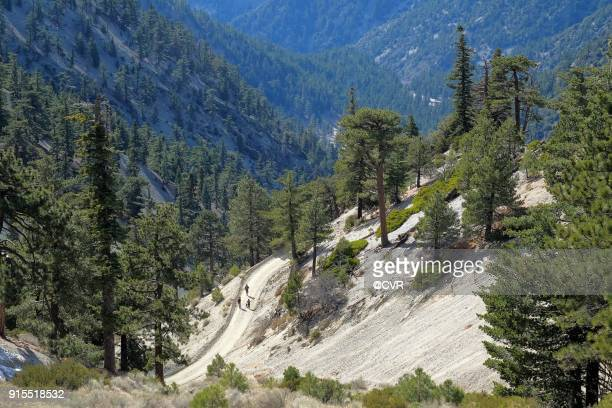 view from mount baldy - mount baldy stock photos and pictures