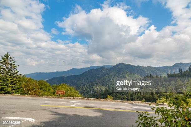 view from newfound gap, north carolina - newfound gap stock photos and pictures