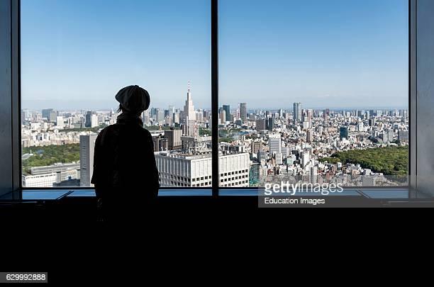 View from Observation Decks of Tokyo Metropolitan Government Building Shinjuku Japan