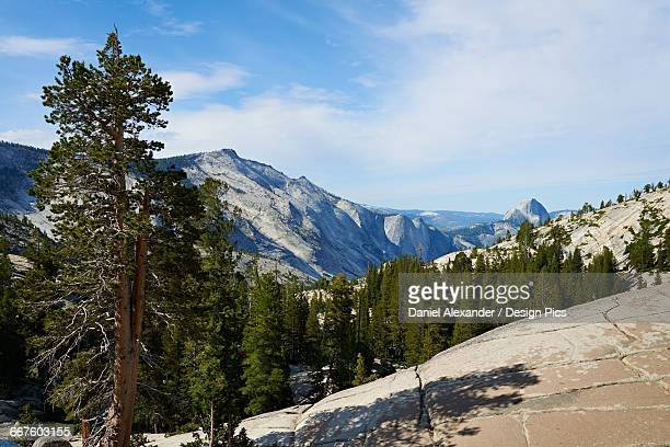View from Olmsted Point towards Half dome, Yosemite National Park