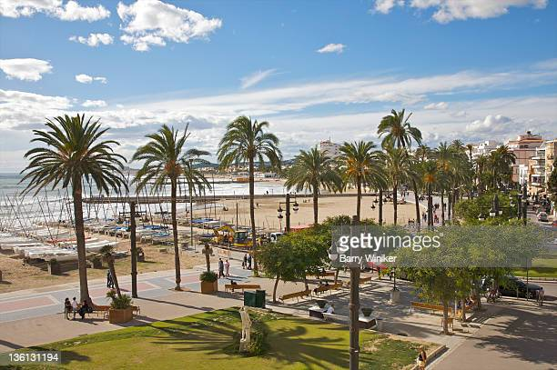 View from on high of palm trees, walkway and beach