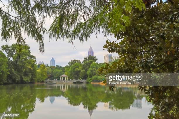 view from piedmont park - piedmont park atlanta georgia stock pictures, royalty-free photos & images