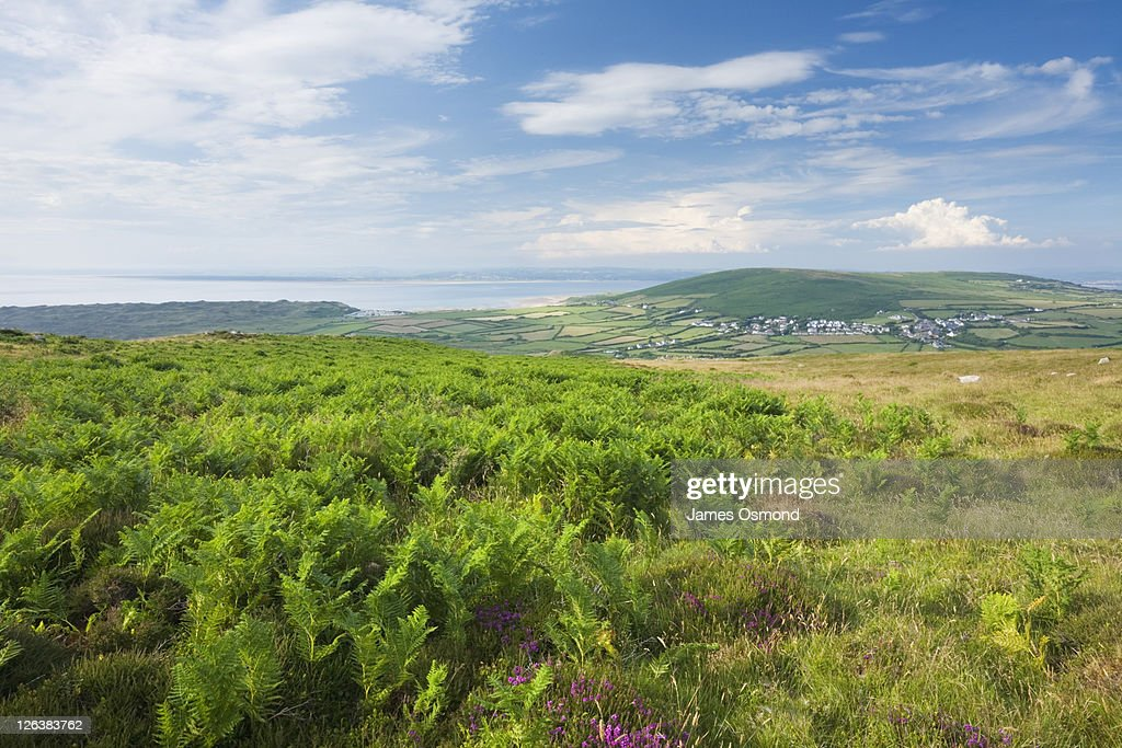 View from Rhossili Down towards Llangennith Village and Llanmadoc Hill. Gower. Wales. UK. : Stock Photo