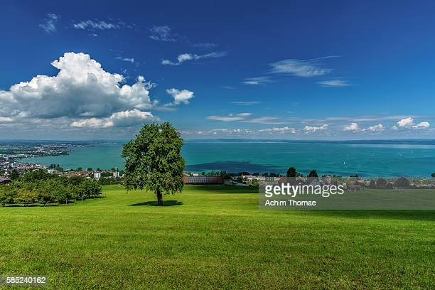 view from rorschacherberg across lake constance and rorschach, st. gallen, switzerland, europe - bodensee stock-fotos und bilder