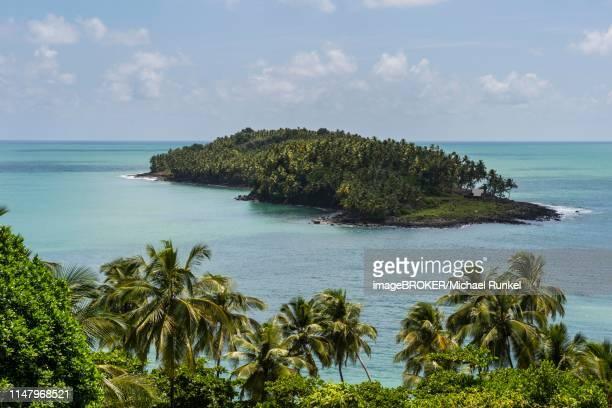 view from royal island on devils island, iles du salut, french guiana - guayana francesa fotografías e imágenes de stock