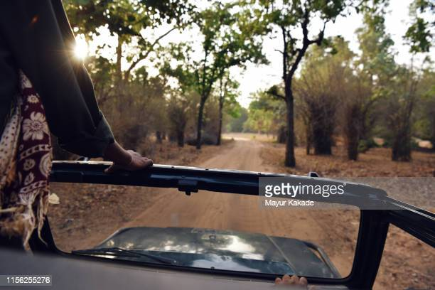 view from safari vehicle in bandhavgarh national park - bandhavgarh national park stock pictures, royalty-free photos & images