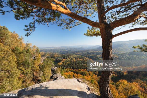view from schrammsteine rocks to hohe liebe mountain in elbe sandstone mountains, germany, europe - liebe stock pictures, royalty-free photos & images