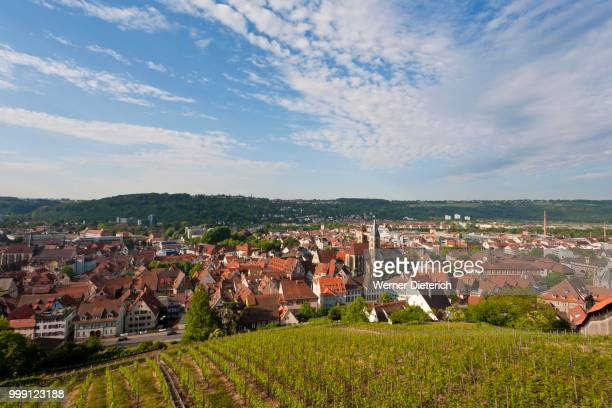 View from the Castle at Esslingen over a vineyard, viticulture, Baden-Wuerttemberg, Germany