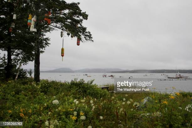 August 5: View from the Cranberry Isles as a Mission Island team sees patients on off the Maine coast on August 5, 2021. (Photo by Ellie Markovitch...
