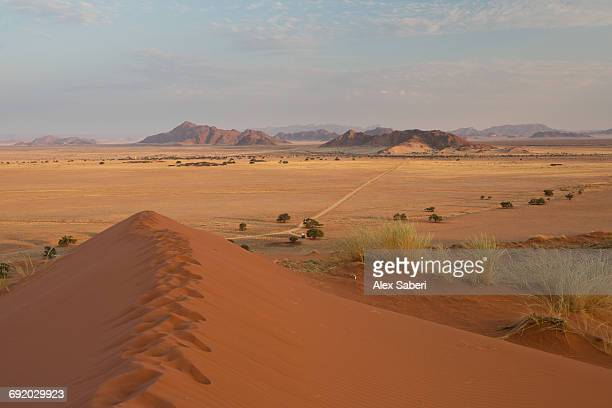 a view from the elim dune at sunset in namibias namib-naukluft national park. - alex saberi stock pictures, royalty-free photos & images