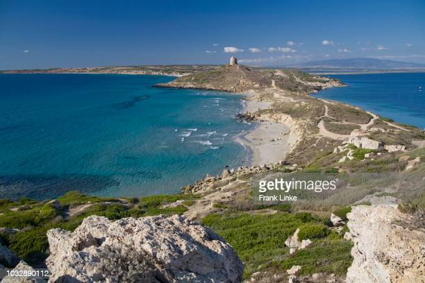 view from the foothills of the capo san marco with spanish tower and tharros, sinis peninsula, oristano province, sardinia, italy - oristano imagens e fotografias de stock