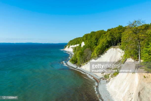 view from the high shore to the baltic sea, the chalk cliffs and the common beeches forest (fagus sylvatica), jasmund national park, ruegen, mecklenburg-vorpommern, germany - 炭酸石灰 ストックフォトと画像