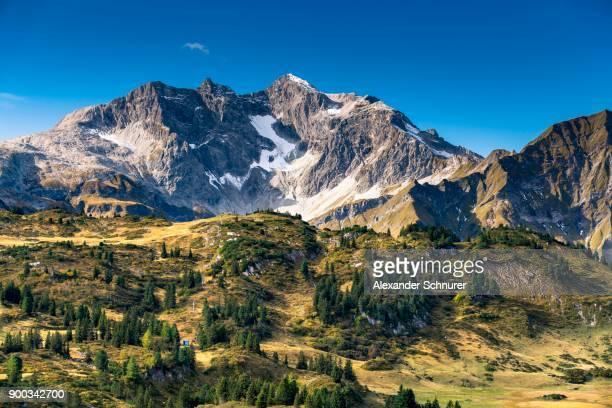 view from the hochtannbergpass to the braunarlspitze, 2649 m, vorarlberg, austria - vorarlberg stock photos and pictures
