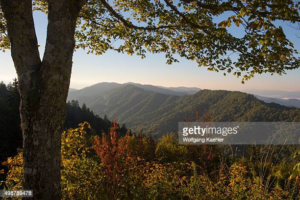View from the Newfound Gap Overlook of the Great Smoky Mountains National Park in North Carolina USA