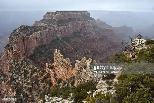A view from the North Rim of the Grand Canyon on May 2015 AFP PHOTO/MLADEN ANTONOV