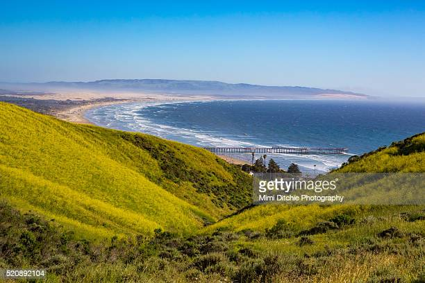 view from the pismo preserve - pismo beach stock pictures, royalty-free photos & images