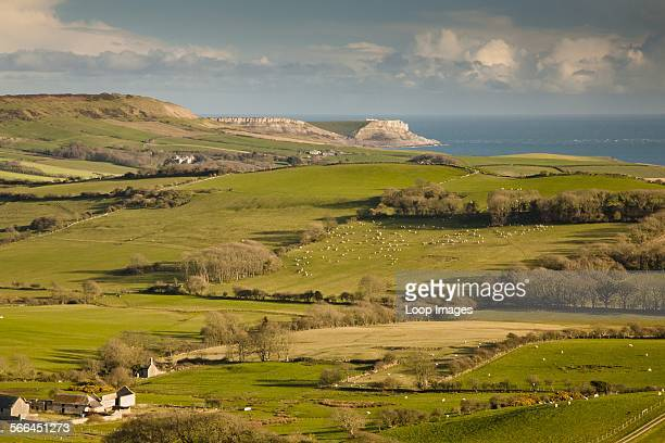 View from the Purbeck Hills near Church Knowle over rural pastures towards the coast and cliffs of the Jurassic Coast.