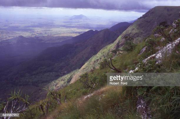 View from the summit of Mulanje Mountain Forest Reserve in southern Malawi Africa