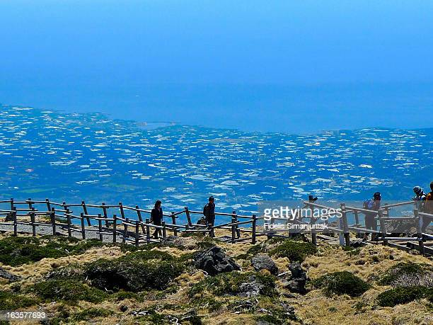 view from the top of halla mountain  (hallasan) - hallasan stock photos and pictures