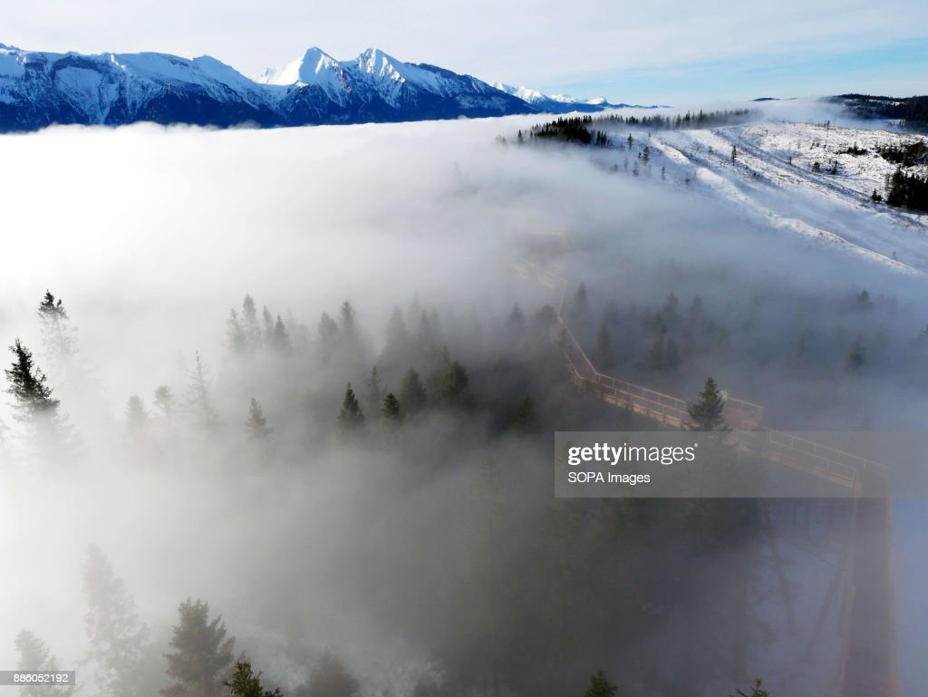 View from the top of the viewing deck. In Tatra mountains in Slovakia, in Bachledova valley, a treetop walk was opened in September 29th 2017. The trail is 1234 meters long and was build 24 meters over the terrain. There is also observation tower 32 meters high. The trail was build from wood by German construction company. You can see Tatra mountains and Pieniny mountains from there. There are just few places where you can experience walk in the top of trees in Europe. It´s not just simple trial. It is also educational path. In first two months, more than 60 000 visitors walked in top of trees there.
