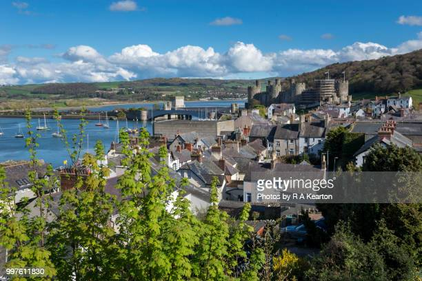 view from the town walls at conwy, north wales - wales stock-fotos und bilder