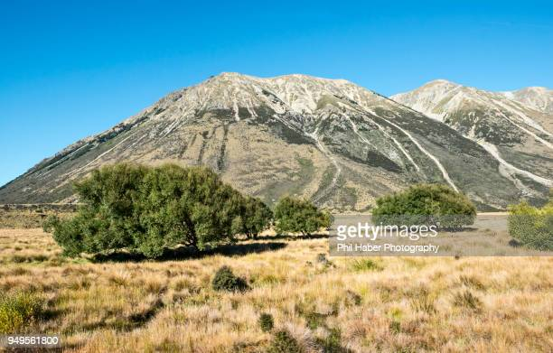 view from the tranzalpine train - phil haber stock pictures, royalty-free photos & images