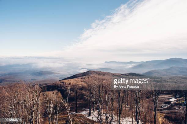 view from top of matra mountains in hungary - hungary stock pictures, royalty-free photos & images