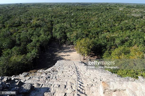 View from top of Mayan pyramid with Yucatan Jungle