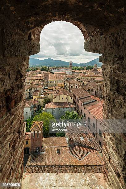 view from Torre dei Guinigi lucca Tuscany