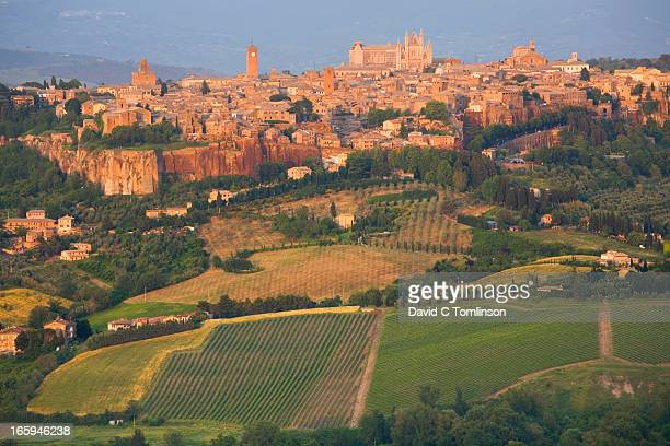 view from west at sunset, orvieto, umbria, italy - orvieto stock pictures, royalty-free photos & images