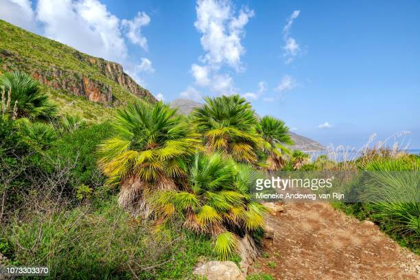 View from Zingaro NatZingaro Nature Reserve Park on the Gulf of Catellammare, San Vito Lo Capo, Sicily, Italy