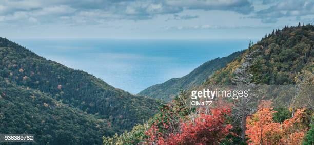 view in the mountain look-off of atlantic ocean, cape breton highlands national park, nova scotia, canada - cape breton island stock pictures, royalty-free photos & images