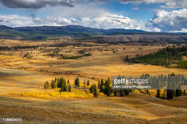 view in yellowstone national park - ワイオミング州 ストックフォトと画像